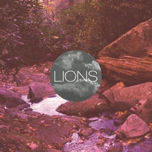 Lions - MTNZ 12