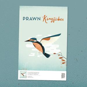 Prawn - Kingfisher Poster