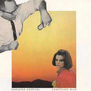 Radiator Hospital - Something Wild LP