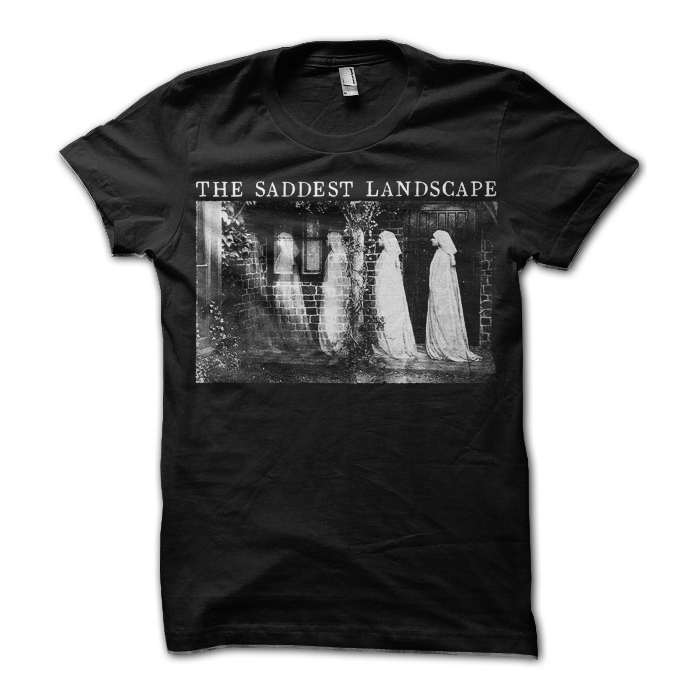 Day By Day Records The Saddest Landscape T Shirt