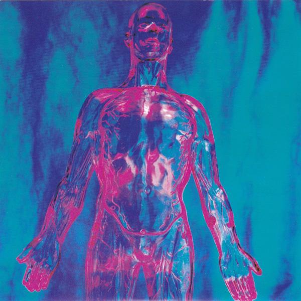 Nirvana - Sliver b/w Dive 7