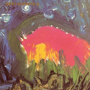 Meat Puppets – Meat Puppets II 12' (LTD out of 500)