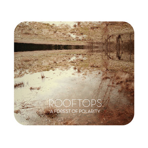Rooftops - A Forest of Polarity