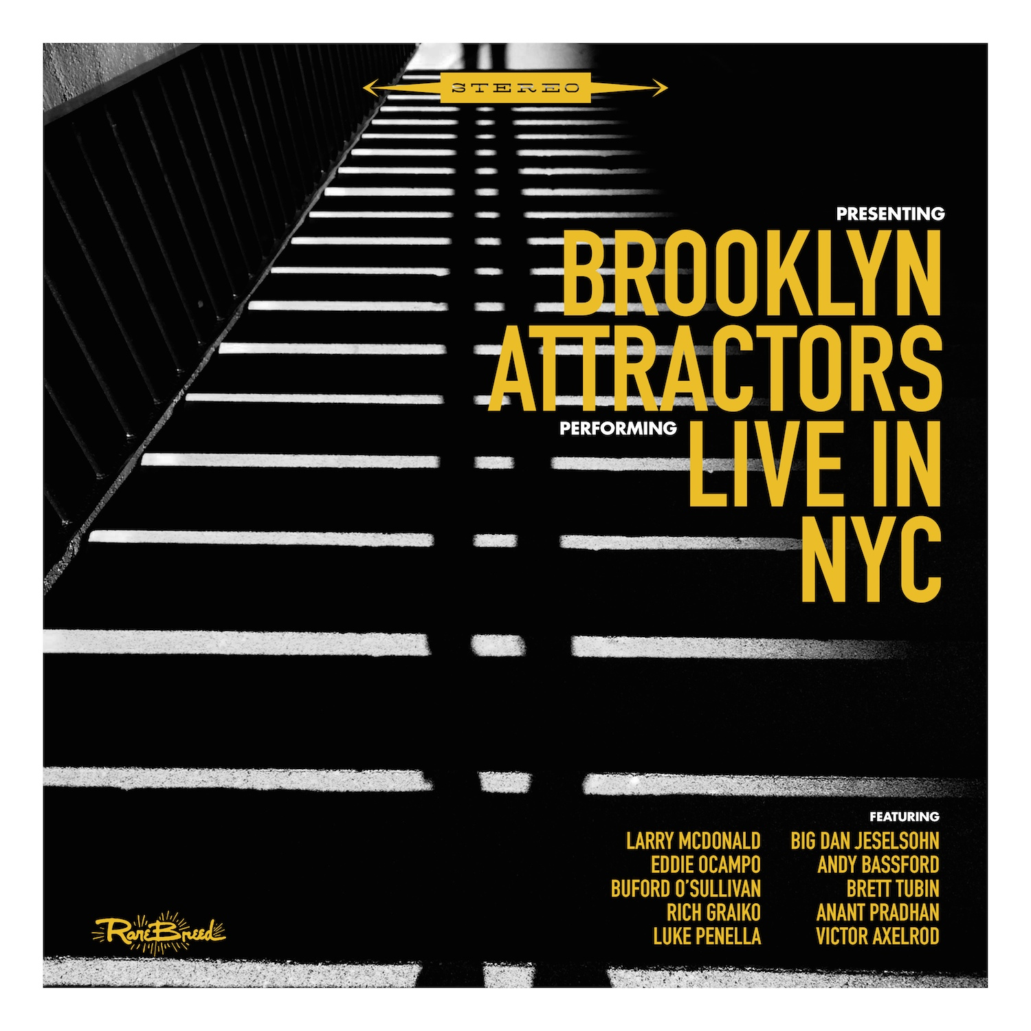 Brooklyn Attractors