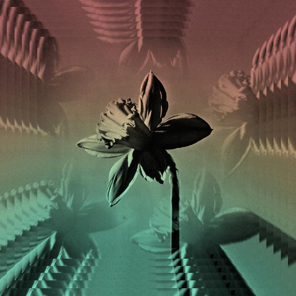 USA Nails - Sonic Moist (Single)