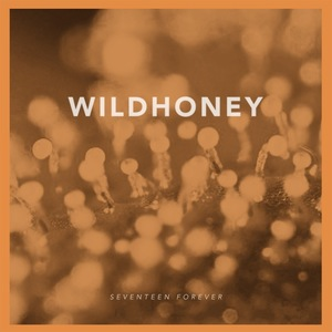 Wildhoney - Seventeen Forever 7