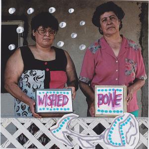 Wished Bone - Pseudio Recordings