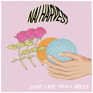 Nai Harvest - Just Like You / Jelly