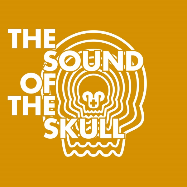 THE SOUND OF THE SKULL SERIES- FALLEN FROM THE SKY-