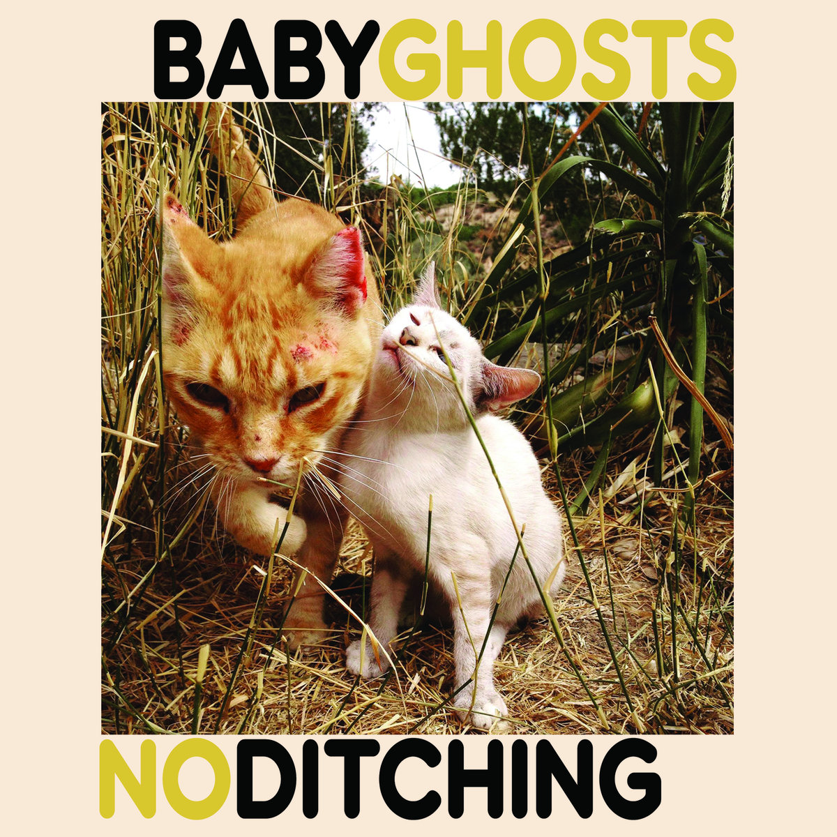 Baby Ghosts / No Ditching - Split 7