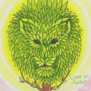 Lion of Judah - Soul Power CD