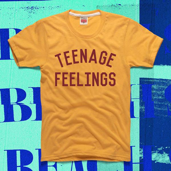 Beach Slang - A Loud Bash Of Teenage Feelings shirt