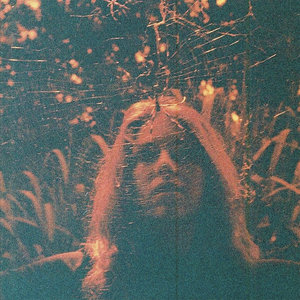 Turnover -  Peripheral Vision LP / Tape