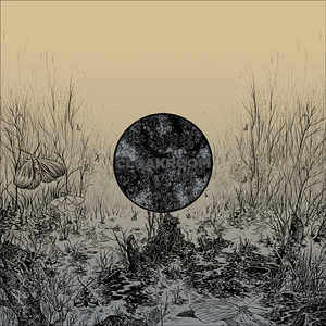 Infinity Vinyl 12