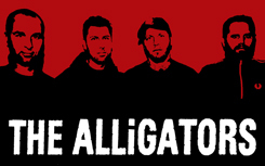 The Alligators