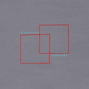 Pinegrove - Cardinal