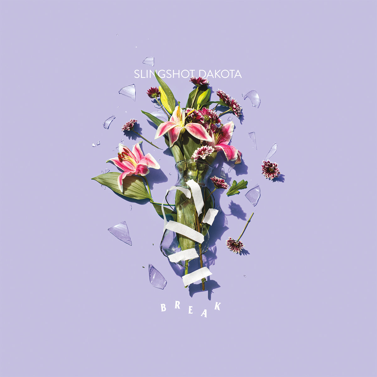 Slingshot Dakota - Break LP