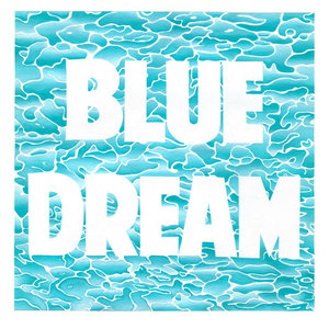 Turnover - Blue Dream