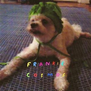 Frankie Cosmos 'Zentropy' LP