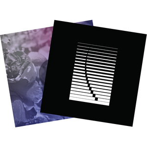 See Through Dresses - Horse of the Other World (LP2) + Self-Titled (LP1)