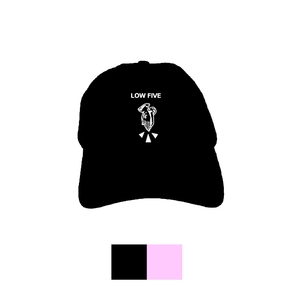 Down Low Dad Hat (2 colors)