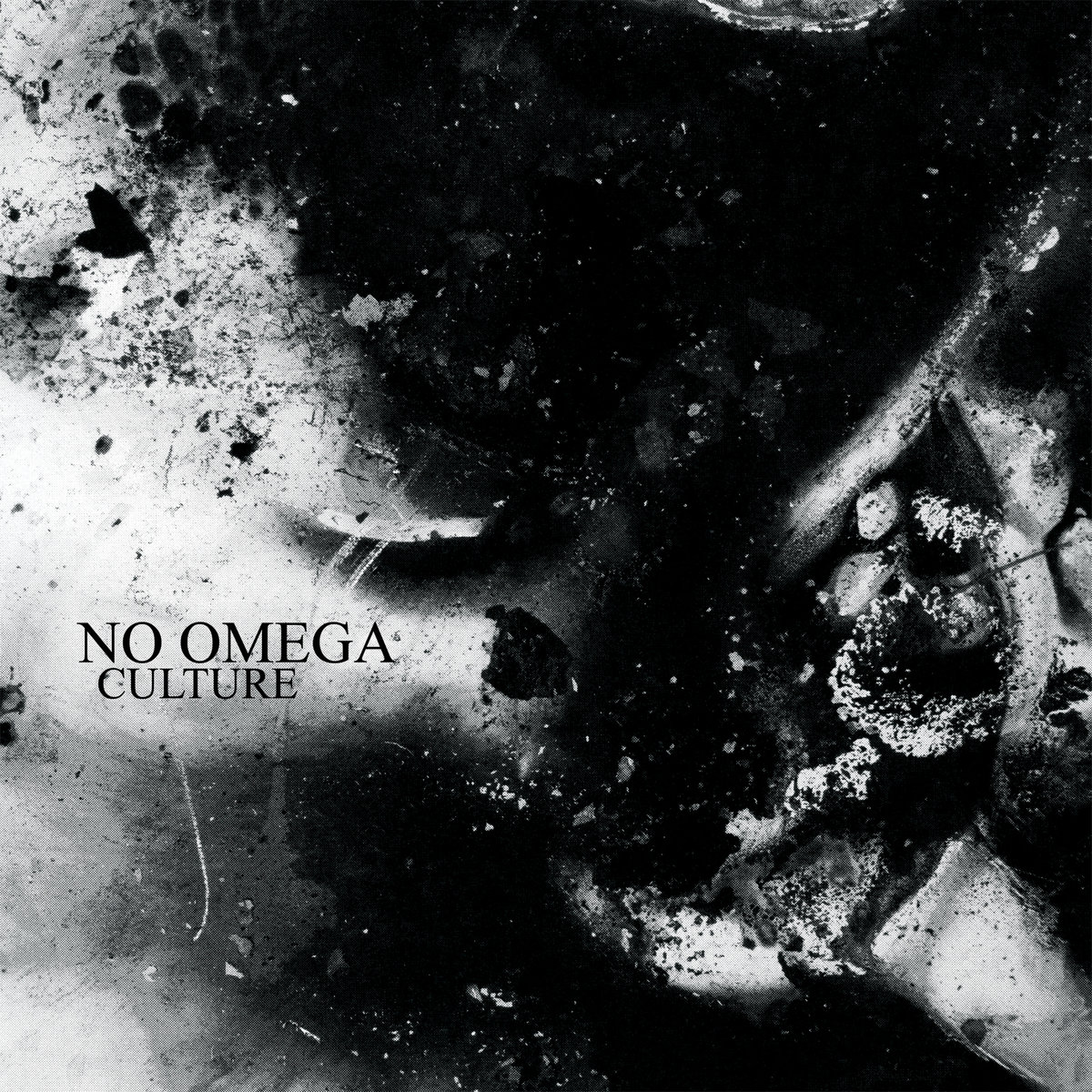 No Omega - Culture LP - SPECIALIST SUBJECT RECORDS
