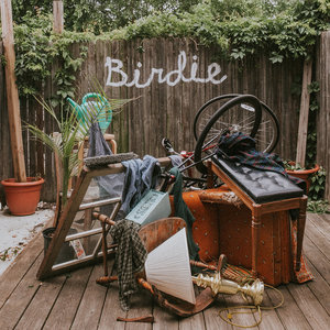 Slaughter Beach, Dog - Birdie LP