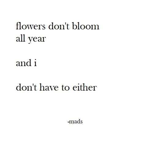 flowers dont bloom all year poem madi draxler