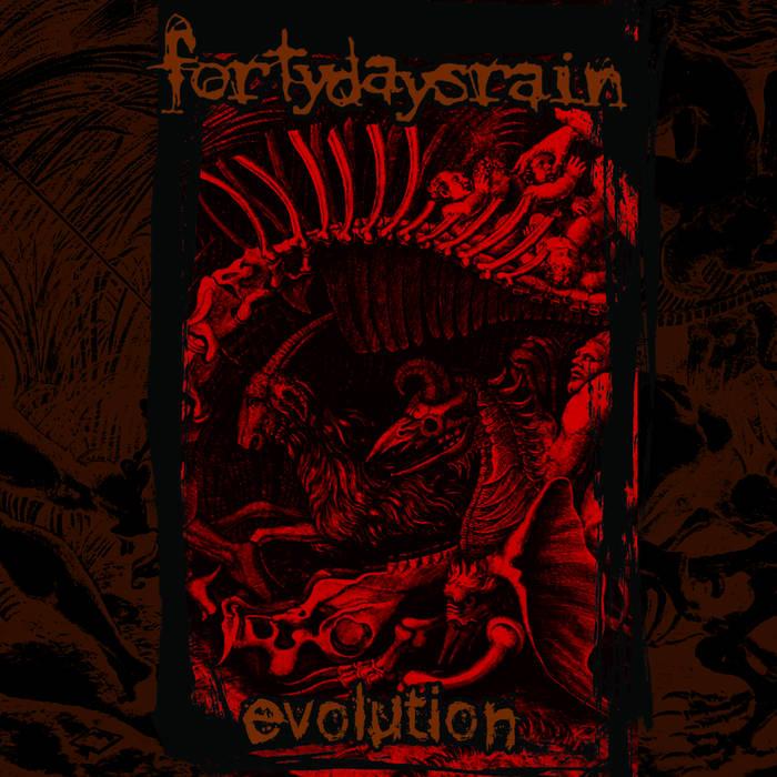 FORTY DAYS RAIN - EVOLUTION