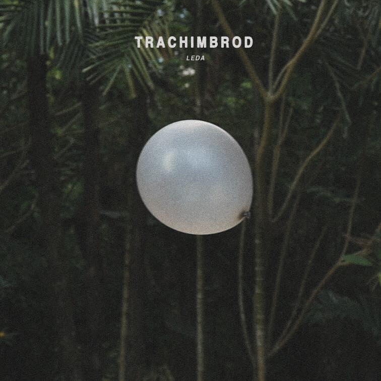 Trachimbrod -