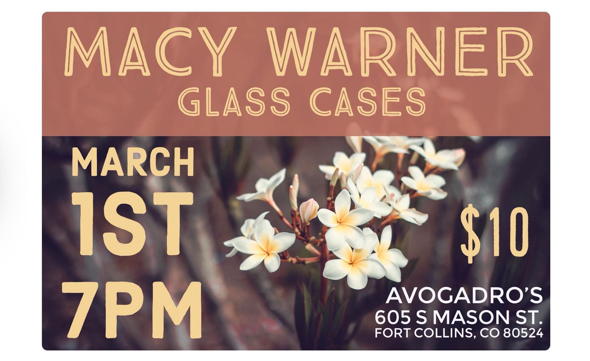 MACY WARNER GLASS CASES
