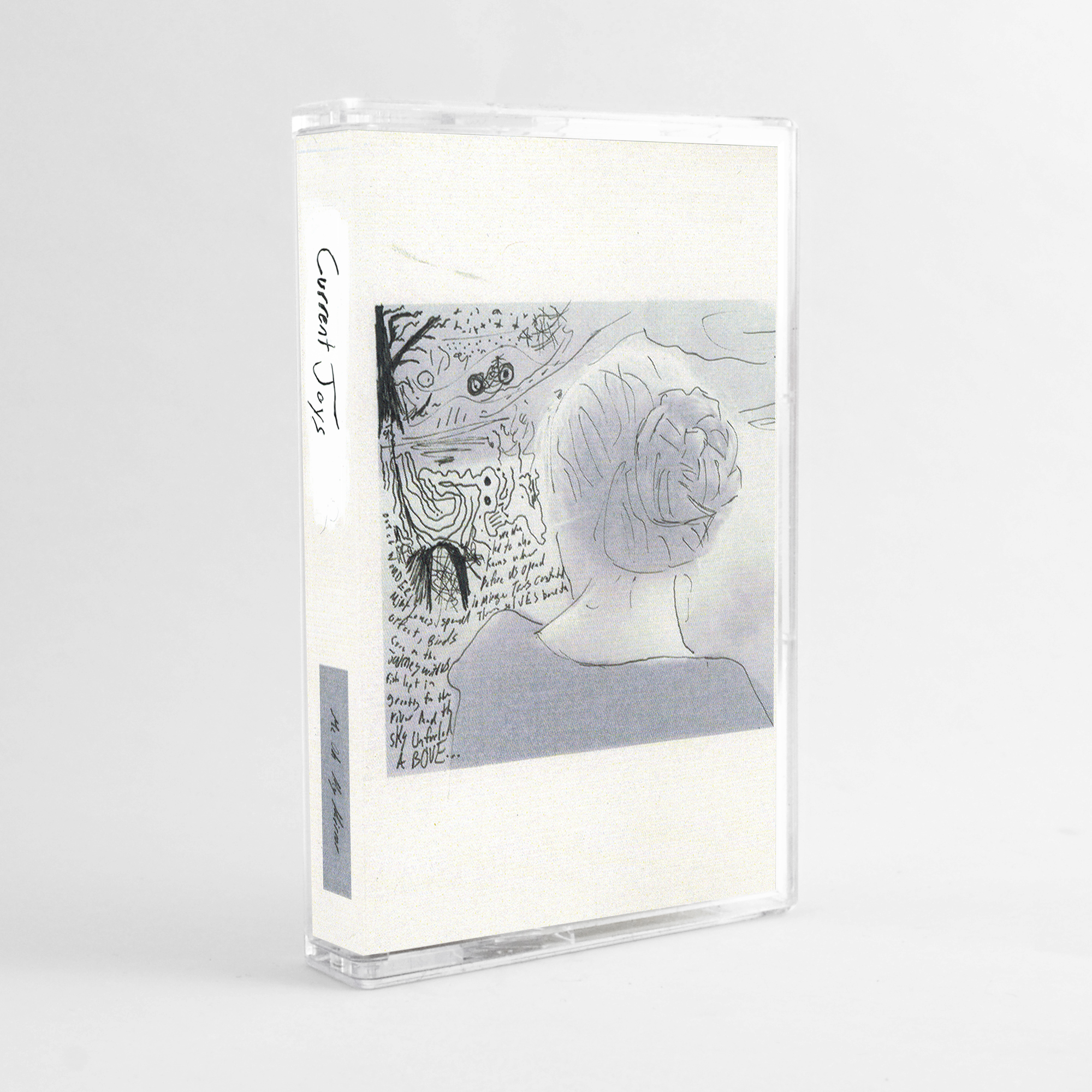 Current Joys Tape Discography