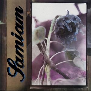 Samiam - s/t LP