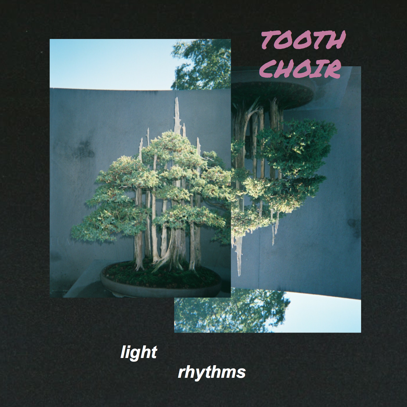 Tooth Choir - Light Rhythms *SOLD OUT*