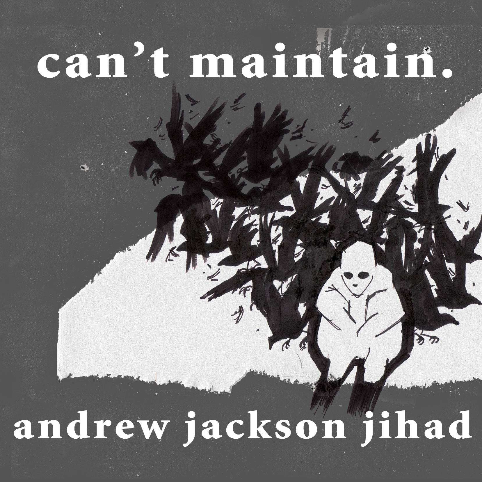 Andrew Jackson Jihad (AJJ) - Can't Maintain LP