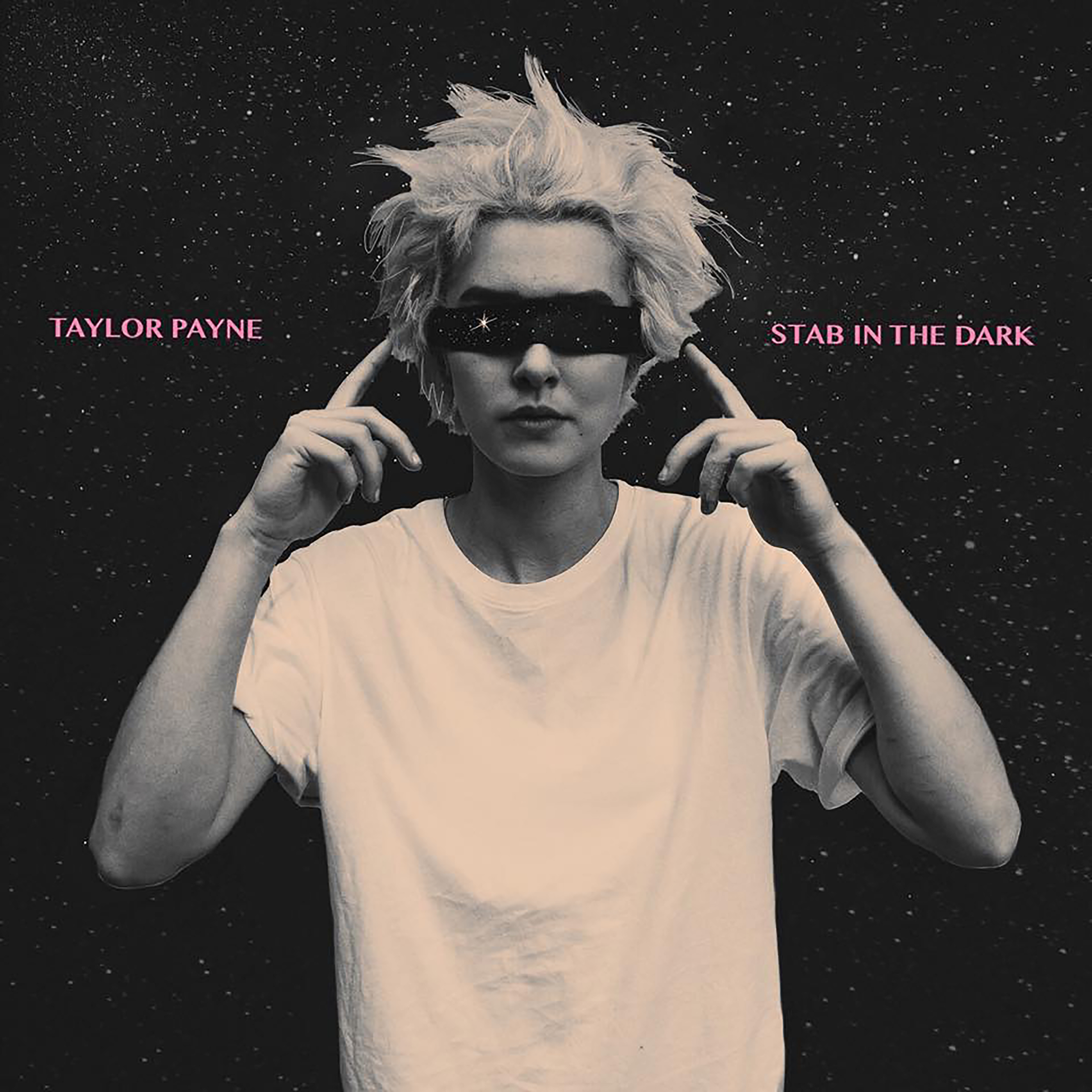 Stab in the Dark - Taylor Payne