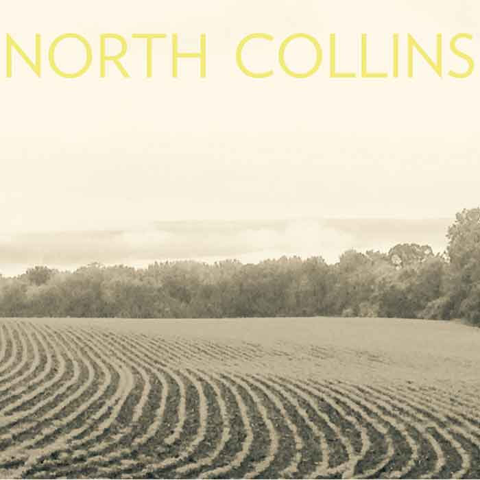 North Collins