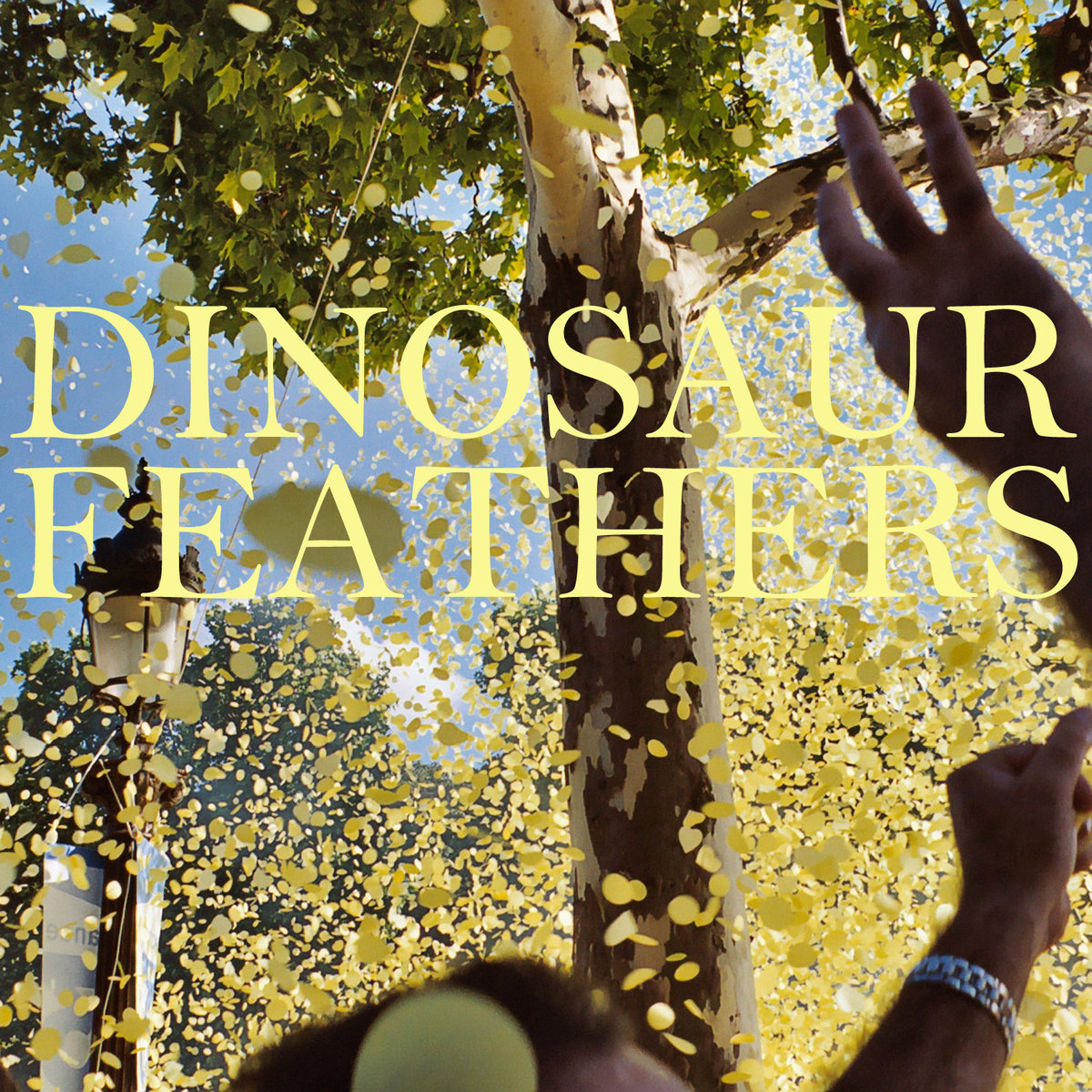 Dinosaur Feathers - Whistle Tips