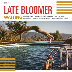 Late Bloomer - Waiting LP
