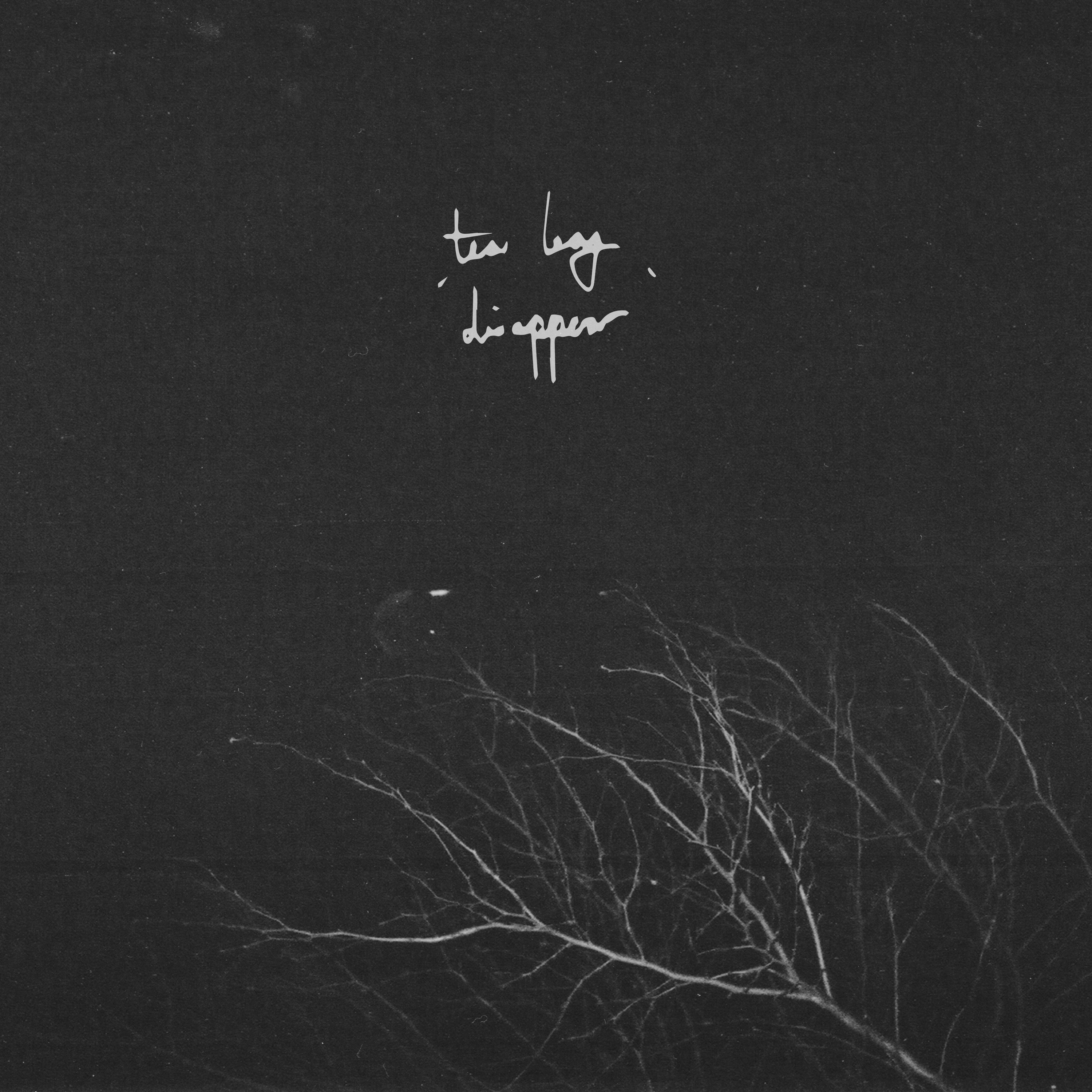 Tea Leaf - Disappear