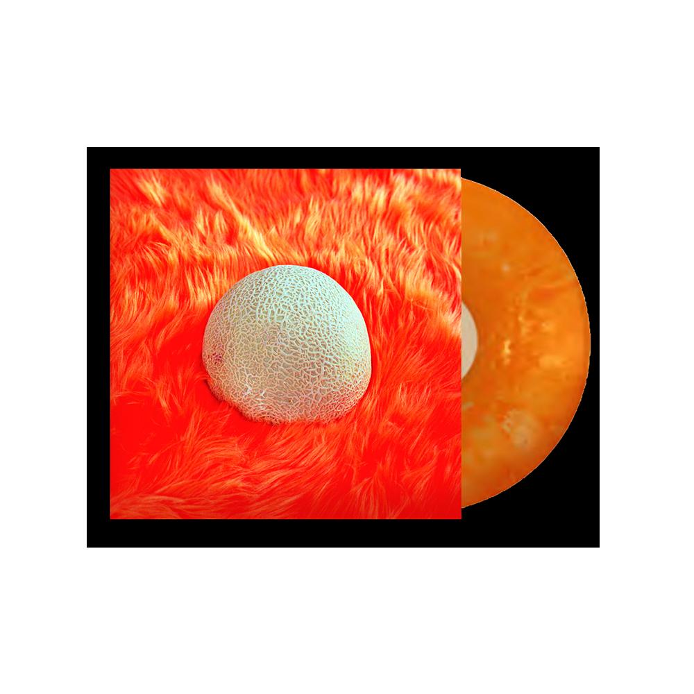 Logo Hoodie + Vinyl