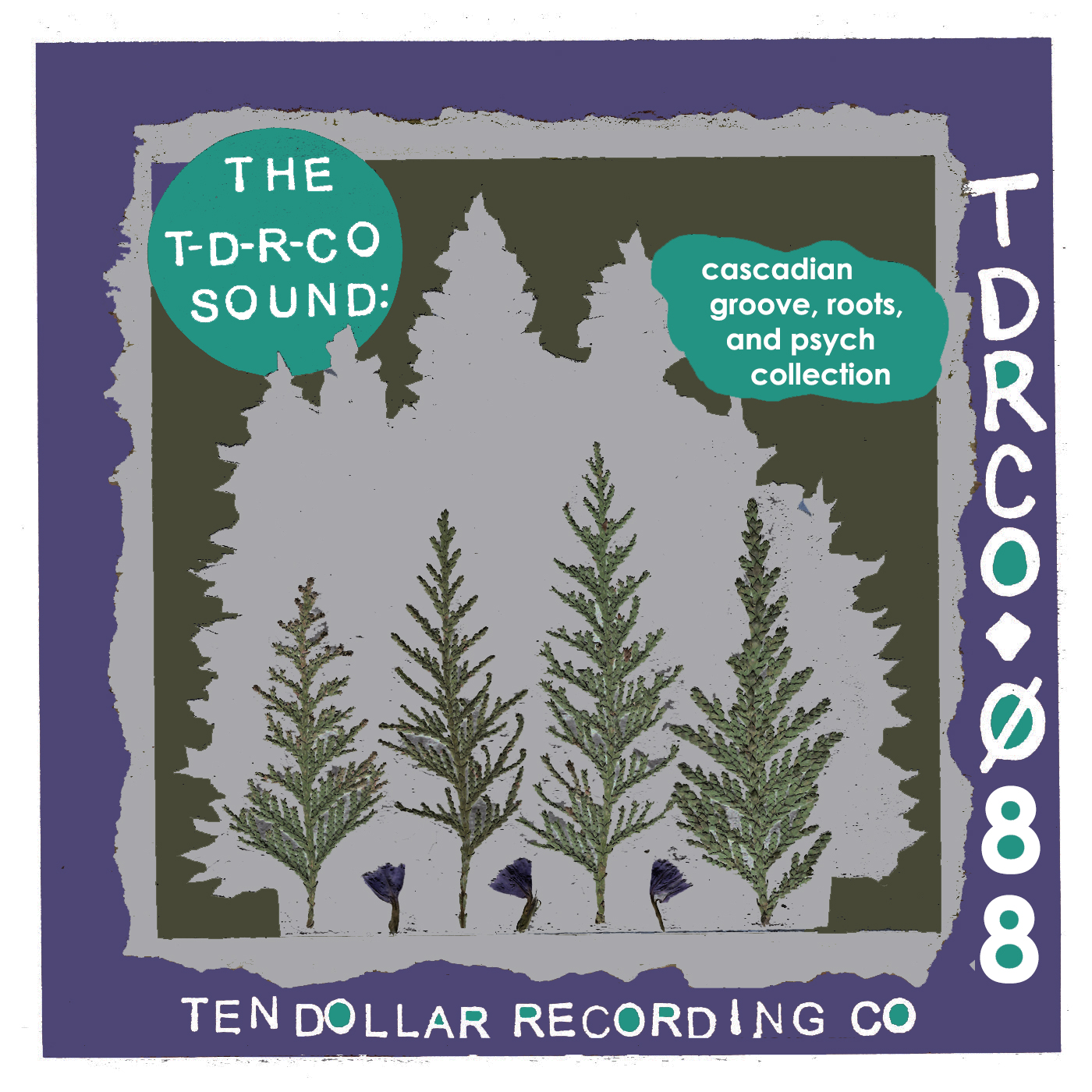 The T-D-R-Co Sound: Cascadian Groove, Roots, and Psych Collection