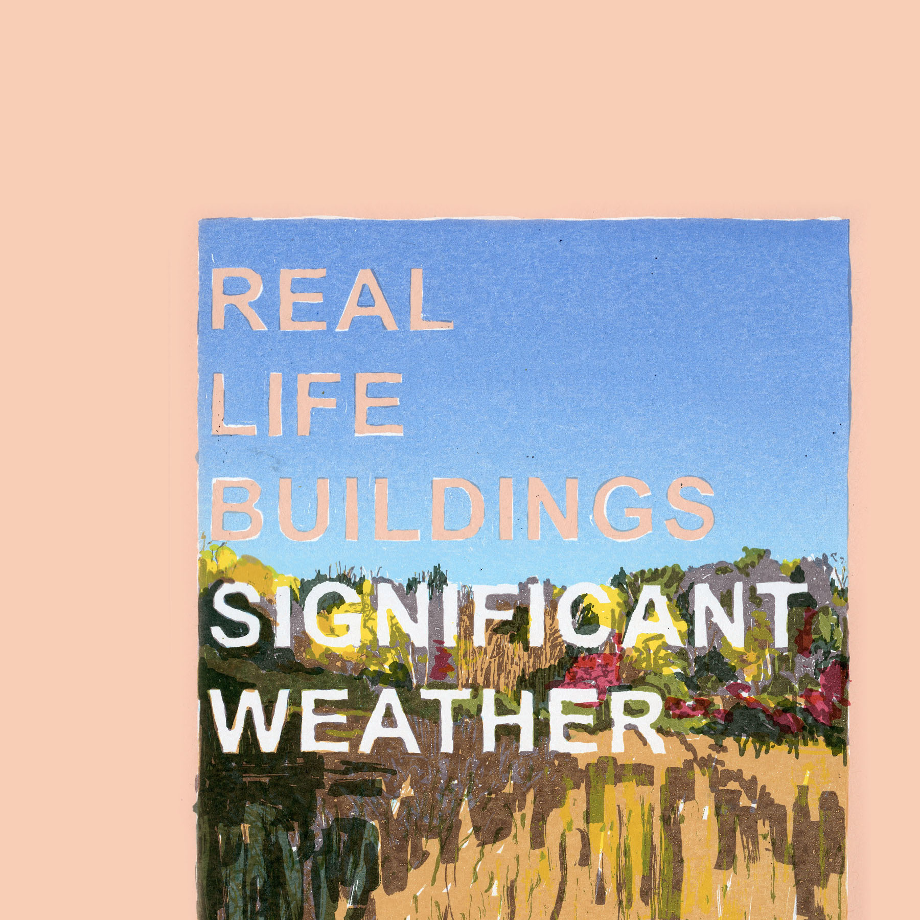 Real Life Buildings - Significant Weather Limited Edition LP