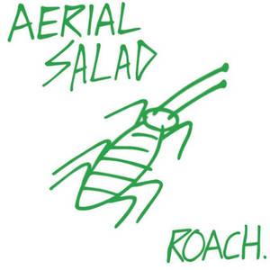 Aerial Salad - Roach