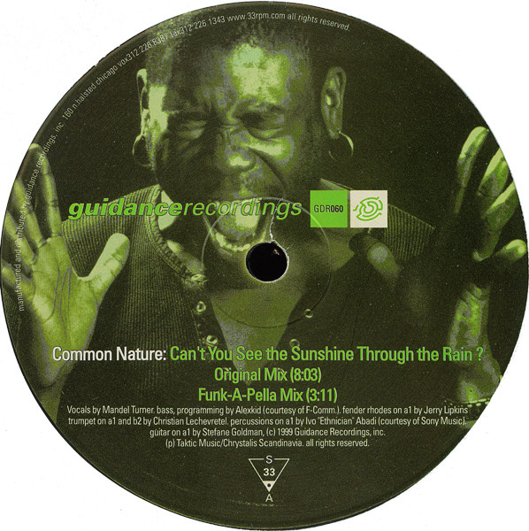 Common Nature – Can't You See The Sunshine Through The Rain? (Guidance Recordings)