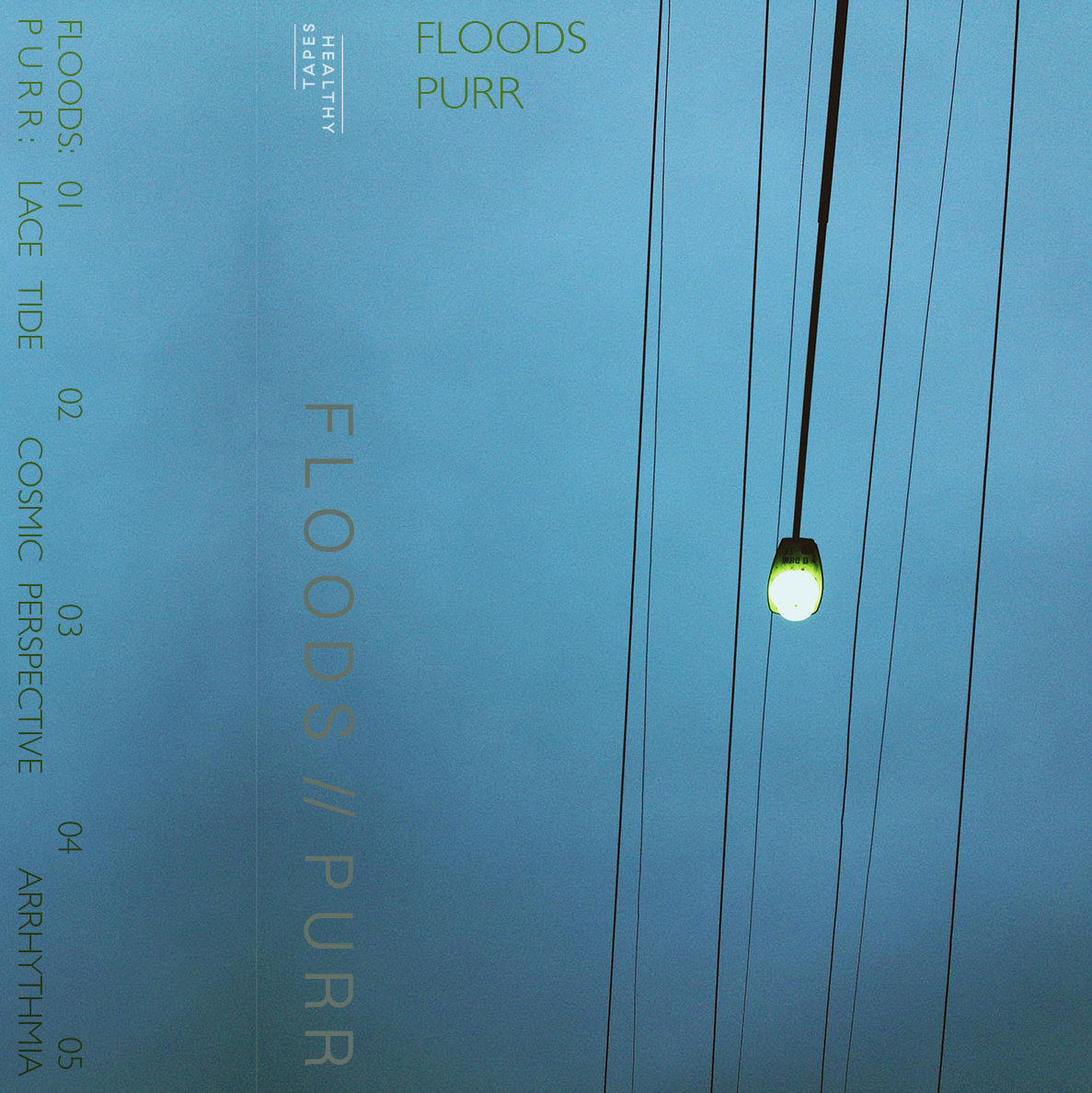 Floods / Purr - Split