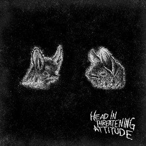 Natterers - Head In Threatening Attitude LP