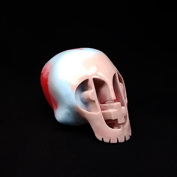 P+P Skull - Senior Discount Variant