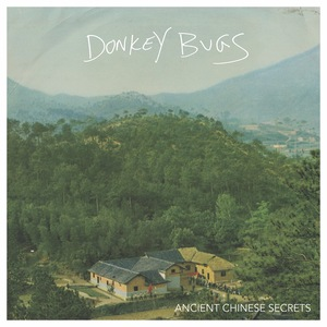 Donkey Bugs - Ancient Chinese Secrets LP