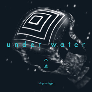 Elephant Gym - Underwater